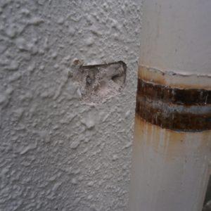 雨どい塗装施工前